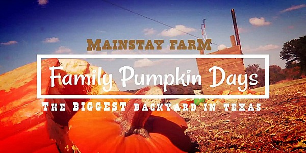 Family Pumpkin Day