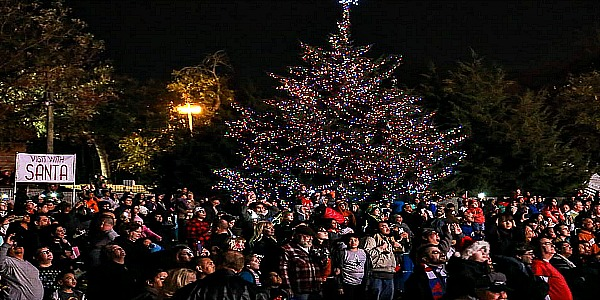 FarmersBranchTreeLighting